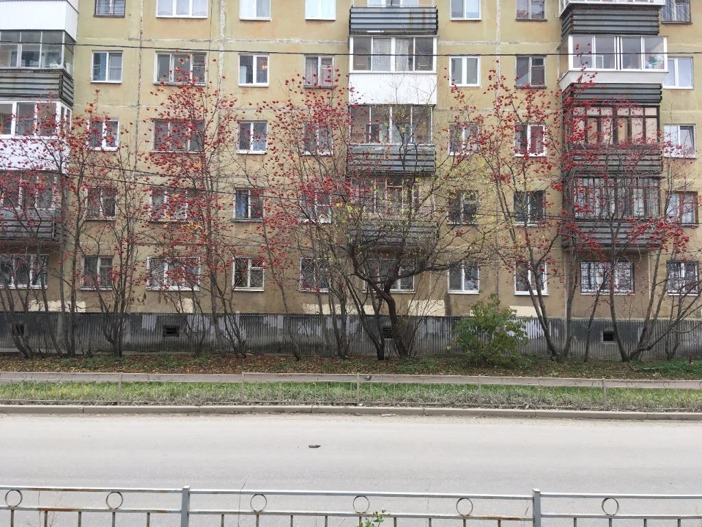 Екатеринбург, пехотинцев, id: сдается уютная и чистая квартира в удобном для проживания районе с развитой инфраструктурой и хорошей транспортной развязкой.