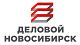 Деловой Новосибирск, консалтинговая компания